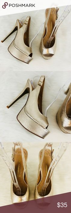 Chinese Laundry Abba Metallic Platform Heel New without tags or box.  Metallic snake print.  Adjustable buckle closure at ankle.  Heel measures about 5 inches.  Distressed look on the print. Chinese Laundry Shoes Platforms
