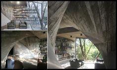 los libros hacen más lindo cualquier lugar