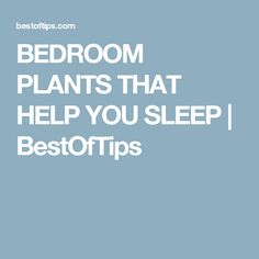 BEDROOM PLANTS THAT HELP YOU SLEEP | BestOfTips