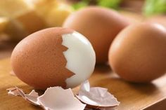Hard boiled egg with shell (Many suggestions of what you feed your budgie  in this pin.)