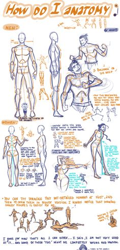 An excellent figure drawing tutorial - human anatomy - how to draw a man - human figure - drawing reference Figure Drawing Tutorial, Figure Drawing Reference, Art Reference Poses, Anatomy Reference, Design Reference, Male Figure Drawing, Hand Reference, Figure Drawings, Drawing Techniques