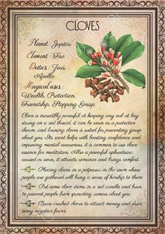 Printable Herbs Book of Shadows Pages Set Herbs & Plants Correspondence, Grimoire Pages, Witchcraft, Wicca, Printable BOS – Magic – Home Recipe Wicca Herbs, Witchcraft Herbs, Witchcraft Spell Books, Wiccan Spell Book, Green Witchcraft, Witch Spell, Magick Spells, Real Spells, Candle Spells
