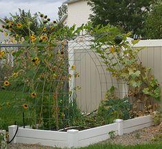 1000 Images About Garden Trellis On Pinterest Cucumber Trellis Trellis And Garden Trellis