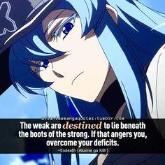 Anime Quote: Akame ga Kill!