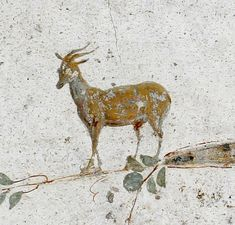Excavated from Stabiae, near Pompeii - Small wall painting from Villa Poppaea.