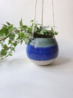 Hanging Planter  Hanging Vase for succulent cacti by viCeramics