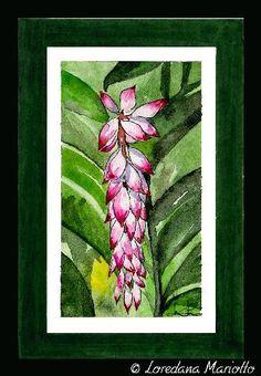Tropical flower   Flickr – Condivisione di foto!