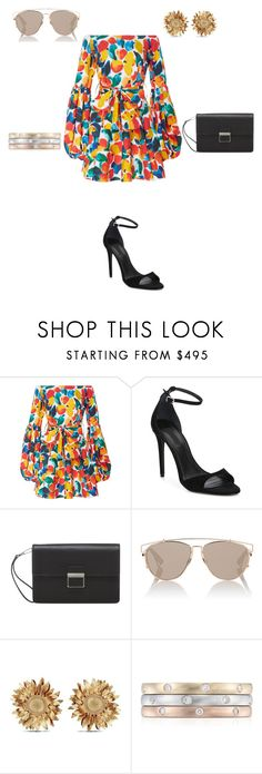 """""""Printed Dress Outfit"""" by butterflyjones ❤ liked on Polyvore featuring Caroline Constas, Alexander Wang, Christian Dior, Asprey and Blue Nile"""