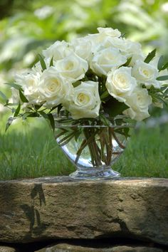 Beautiful white roses!