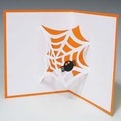 Telaraña- spider web