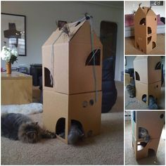 DIY Two-Story Cardboard Cat Climber