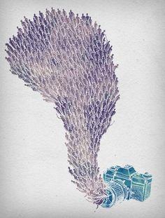 Illustrations by David Fleck   Cuded