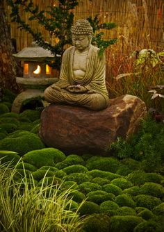 Better than a thousand hollow words, is one word that brings peace ♥ Buddha