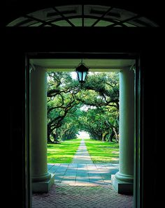 Oak Alley Plantation ~ Vacherie, Louisiana--Looking out the front door towards the Mississippi River.