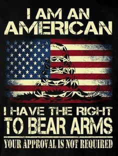 2ND AMENDMENT AMERICAN FLAG RIGHT TO BEAR ARMS METAL SIGN GUNS--GREAT SIGN!!