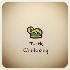 "2,174 Likes, 37 Comments - Turtle Wayne (@turtlewayne) on Instagram: ""Turtle Chillaxing"""