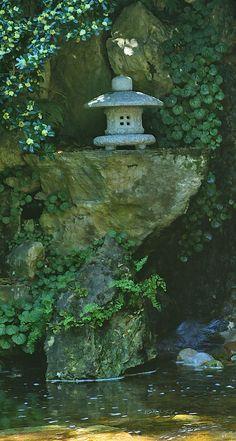 Zilker Zen Photograph  - Zilker Zen Fine Art Print