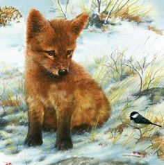Baby Red Fox (144 pieces)