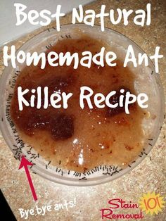 Homemade ant killer (can't use anywhere within the kids' reach, though)