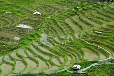 Terraced rice paddies in rural Japan, Mie