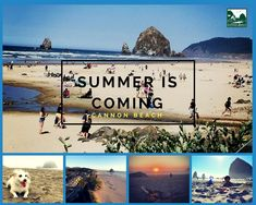 Come stay with us in Cannon Beach.