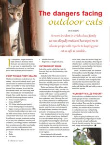 Thank you to everyone who supported me and bought All About Cats Magazine's Dec/Jan issue and read my cover article