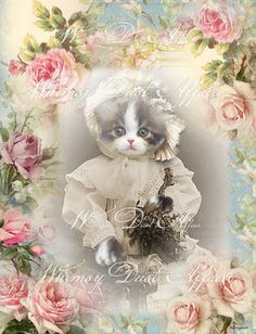 vintage Digital collage sheet, instant download,  Imaginations 97, background, cards, tags, kitten, cat, scrapbooking, decoupage