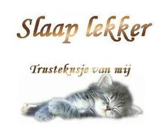 Sleep well and a kiss from me! Out Of Office Message, Love Puns, Goeie Nag, Good Night Messages, Cartoons Love, Dutch Quotes, Good Night Sweet Dreams, Nighty Night, Good Morning Good Night