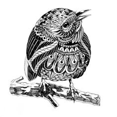 Image result for zentangle animals