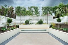 fruit trees, white fencing