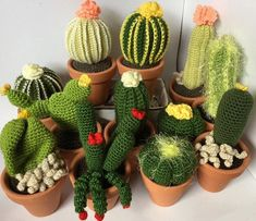 Pero como me gustan estos cactus q hace mi madre a crochet! Seguro q se los quitan de las manos ahora q ya tienen la tiendecita abierta #etsy #etsyshop #etsycrochet #etsyamigurumi #amigurumi #cactuscrochet #cactus #homedecoration #crochet #knit #crochetaddict #minicactus #11march #366days366photos #71photo366 #handmade #hechoamano #ganchillo #cactusganchillo by helens205