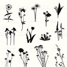 Wild Flowers Silhouette