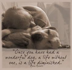 """""""Once you've had a wonderful dog, a life without one is a life diminished."""" Dean Koontz So very true - I've been blessed to have had quite a few wonderful, wonderful dogs! I Love Dogs, Puppy Love, Cute Dogs, Animals And Pets, Cute Animals, Crazy Animals, Pet Loss Grief, Dog Poems, Dog Rules"""