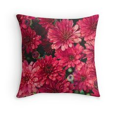 Bold and Bright Chrysanthemum Fine Art Photo Decorative Throw Pillow Cover Fine Art Photography Pillow Case White Peony