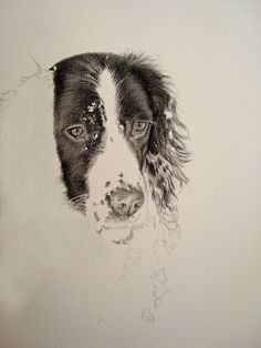 How To Make Dog Collar Portraits By Kim: Spaniel in Snow.How To Make Dog Collar Portraits By Kim: Spaniel in Snow