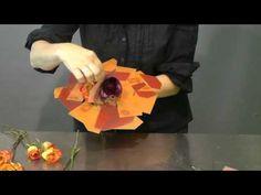 Bouquet Estudiando el color - YouTube