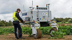 ¿Es malo que los robots sepan matar? BoniRob es capaz de eliminar las malas hierbas de los campos de cultivo para evitar el uso de pesticidas.
