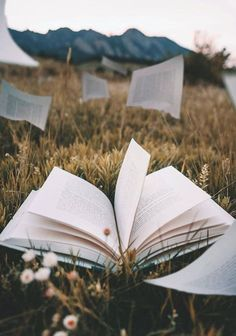 books books books • Book aesthetic Book wallpaper Aesthetic wallpapers