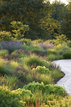La courbe du cheminement appuie le côté naturel du jardin Winner of Gardenista's Best Professional Landscape in the 2014 (Adam Woodruff & Associates)