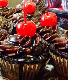 Delicious chocolate cup cakes