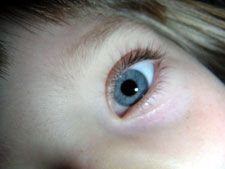 Enter eye color traits of your parents, yourself, your partner's parents, and your partner, and it tells you what color eyes your kids will have...hmmmm cool?