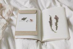 """convexly: """"hluti #1 : fyrir eigu minni by Belle Fleur de Lis on Flickr. """""""