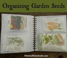 Organizing Garden Seeds. An easy way to sort, organize and store garden, herb and flower seeds | Montana Homesteader: