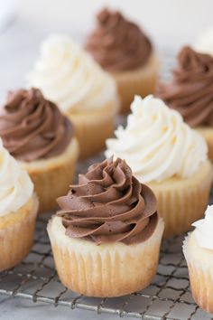 This CLASSIC WHITE CUPCAKE recipe is AMAZING! This is our go-to white cupcake recipe because it's so moist and flavorful. Pair these cupcakes with vanilla or chocolate buttercream. White Cupcake Recipes, White Cupcakes, Best Dessert Recipes, Easy Desserts, Delicious Desserts, Plain Cupcake Recipe, Sweet Desserts, Oreo, Moist Vanilla Cupcakes