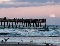 Pin On Florida Beaches Back Up April 19the 12 30pm