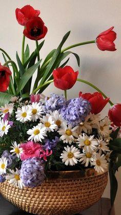 2160x3840 Обои тюльпаны, ромашки, орхидея, гиацинты, лимоны, листья, натюрморт