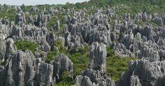 Shilin Stone Forest, China | Amusing Planet