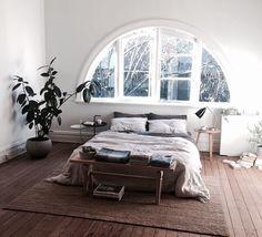 Plant en tapijt