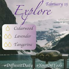 essential oil diffuser blend ~ cedarwood lavender tangerine