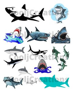 #sharkclipart, #sharkimages, #sharkdigitalimages, #sharkicons, #sharkdigitalicons, #sharkpictures, #sharkdigitalpictures, #sharkcollage, #sharkdigitalcollage, #sharklogos, #sharkdigitallogos